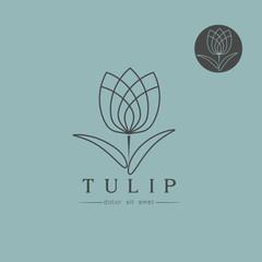 Simple Tulip bud with leaves design