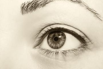 Beautiful insightful look vintage woman's eyes