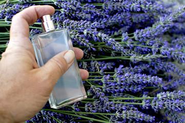 Parfum de lavande