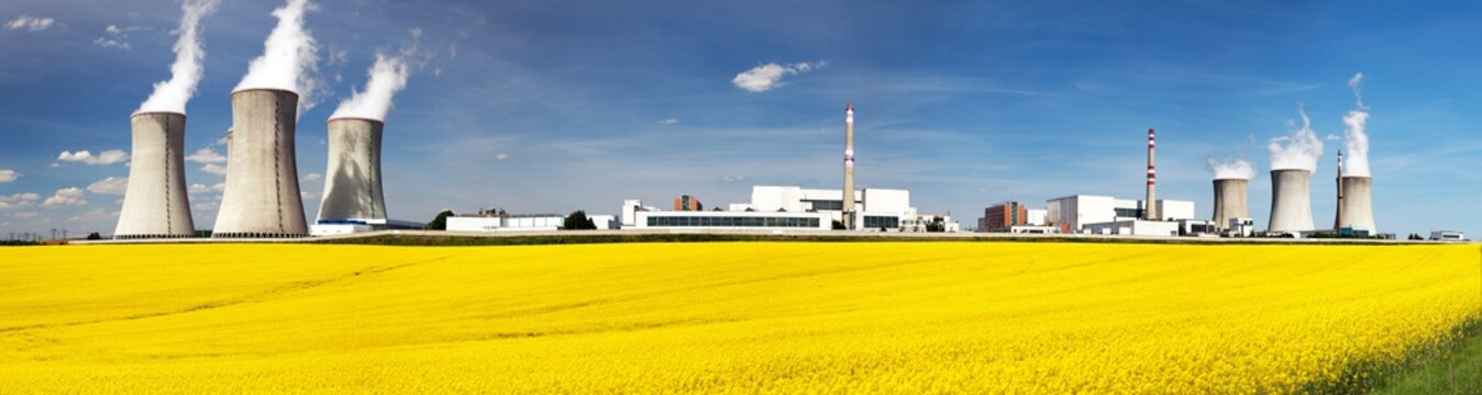 Nuclear power plant with field of rapeseed
