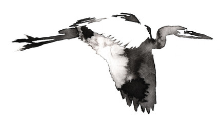 black and white monochrome painting with water and ink draw crane bird illustration