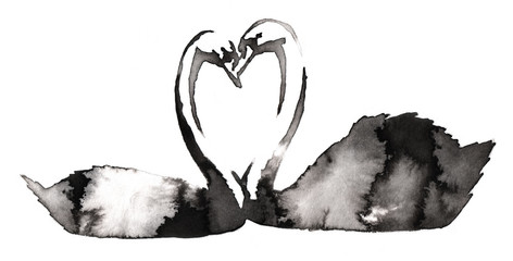 black and white monochrome painting with water and ink draw swan bird illustration