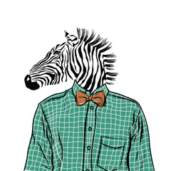 Hand Drawn Fashion Illustration of dressed up zebra, in colors. Vector