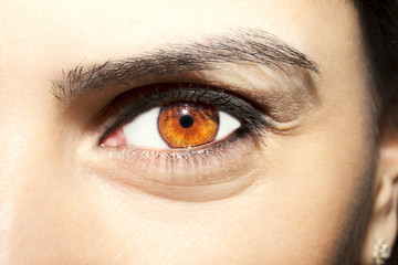 Beautiful insightful look brown woman's eye