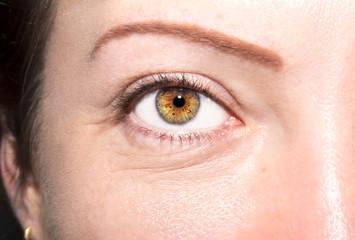 Beautiful insightful look brown woman's eyes