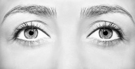 Beautiful insightful look brown woman's eyes.