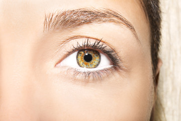 Beautiful insightful look brown woman's eyes..