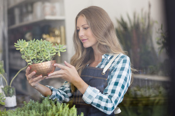 Woman holding a potted plant in flower shop