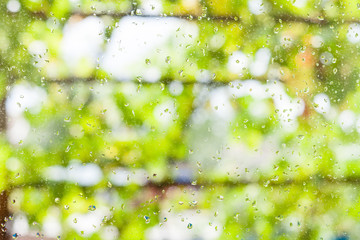 rain drops on window and blurred vineyard