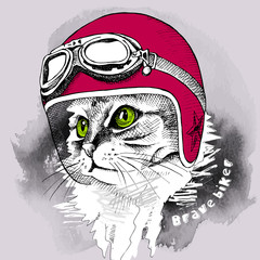 Door stickers Hand drawn Sketch of animals Image cat portrait in retro motorcycle helmet. Vector illustration.