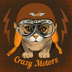 Poster with portrait of a cat wearing a motorcycle helmet. Vector illustration.