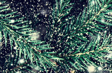 Merry Christmas and Happy New Year  tree background with snowfla