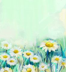 Oil painting daisy flowers in field. Hand paint white flowers gerbera daisy in soft color on green - blue color background. Spring flower seasonal nature background
