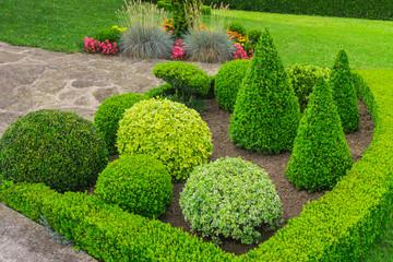 Kleiner Ziergarten mit kugelförmig und kegelförmig geschnittenen Büschen - Small ornamental garden with spherical and cone shaped bushes