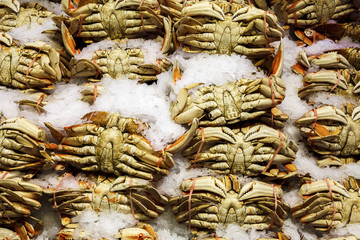 Fresh crab on ice at an outdoor farmers market in Seattle.