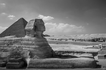 The full profile of the Great Sphinx with the pyramid in the background in Giza. Egypt. Black and white photo.