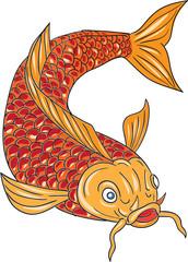 Koi Nishikigoi Carp Fish Swimming Down Drawing