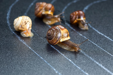 Snails on the athletic track