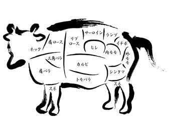 牛肉 部位の名称