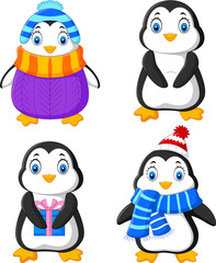 Cartoon funny penguin collection set