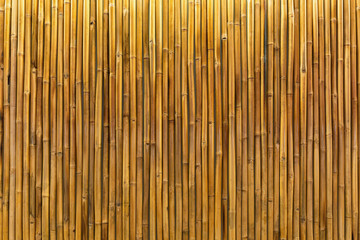 Golden bamboo wall or panel