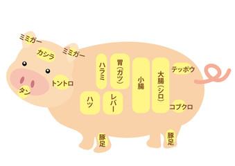 豚肉 内臓部位の名称
