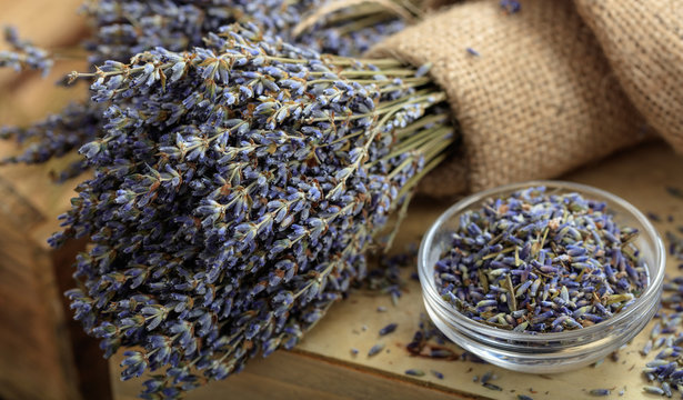 Dried lavender bunch on a wooden table