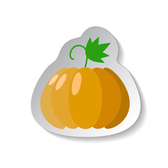 Pumpkin vector icon in flat style with shadow. Vegetable pictogram