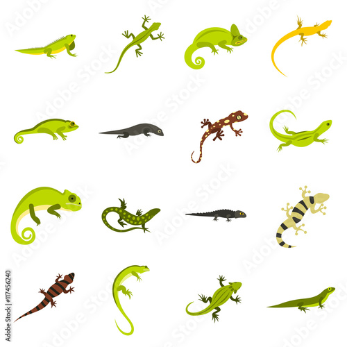 fa786d2ca3433 Flat lizard icons set. Universal lizard icons to use for web and mobile UI,  set of basic lizard elements isolated vector illustration