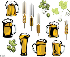 beer, beer mug, hop, vector, , color, black, illustration, elements of graphic registration