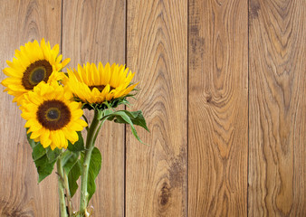 Sunflowers against a wooden backdrop
