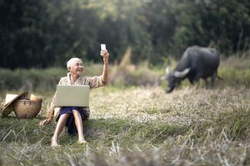 grandmother Social