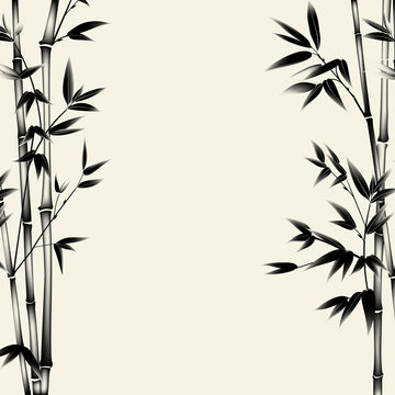 Chinese bamboo painted with a brush on the old paper. Decorative bamboo branches. Vector illustration.