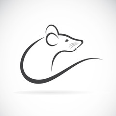 Vector of a rat design on a white background.