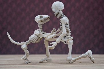 Skeleton and his skeleton dog