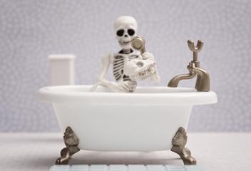 Skeleton dog getting bath