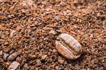 macro coffee bean texture background with powder