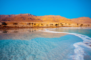 Fototapete - Dead Sea seashore with palm trees and mountains on background
