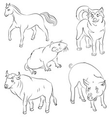 Set of animals: bull, dog, horse, rat and pig