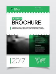 Business Brochure design. Annual report vector illustration temp