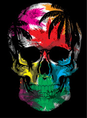 Beautiful hand drawn sketch illustration the skull on the watercolor background