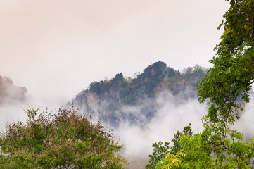 Mountain green forest in the mist  Northern Thailand, Amazing view of  forests