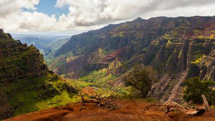 Waimea Canyon, Hanalei, Hawaii, United States of America