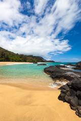 Lava rocks in sea, Kauai, Hawaii, United States of America, close up