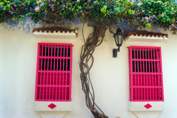 Fotomurales - Pink Windows and White Walls