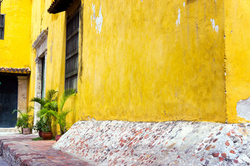 Fotomurales - Colonial Architecture and Plants