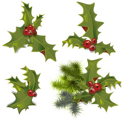 collection of holly branches with leaves and berries