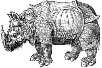 Vintage image early rhino