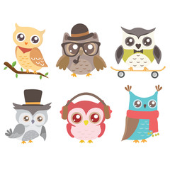 Set of cute owls isolated on white background