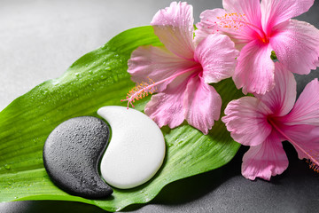 beautiful spa concept of pink hibiscus flowers and Yin-Yang of s